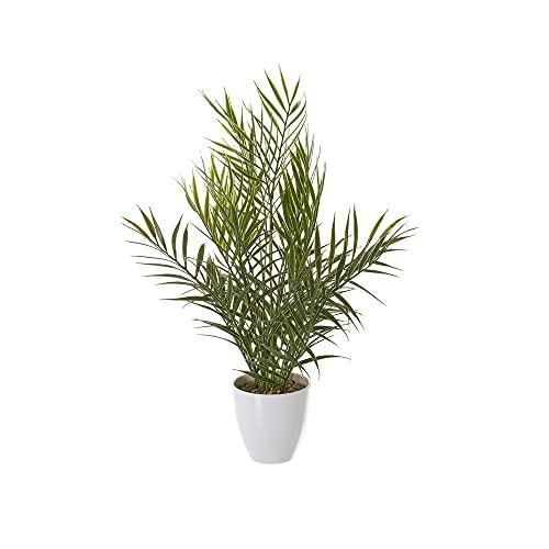 Planta Artificial Palmera Verde de plástico de Ø 20x42 cm - LOLAhome