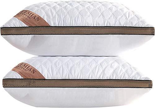 Almohada de Plumas QUANHAO, 100% algodón y algodón. Empaque 2 Almohadas de plumón de Ganso Blanco. Almohada Suave Inflable Natural de Calidad hotelera (Blanco 2 Piezas, 48x74cm)