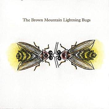 The Brown Mountain Lightning Bugs