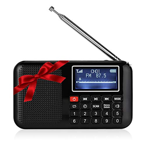 Raddy RF28 Portable FM Pocket Radio, Support USB/MP3/AUX/TF Card Music Player Speaker, Digital Tuning, Rechargeable Battery Operated with Flashligh, Sleep Timer (Black)