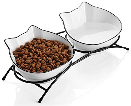 Cats Water Bowl That Will Not Dump