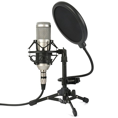 ZINGYOU ZY-801 Professional Studio Microphone, Desktop Computer Cardioid Condenser Mic with Tripod for PC Recording, Broadcasting (Champagne)