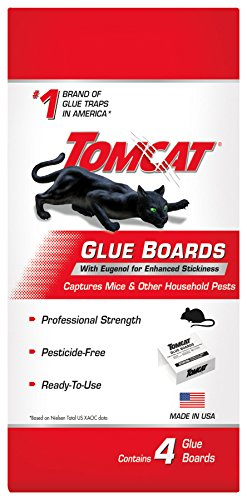 Tomcat Glue Boards with Eugenol for Enhanced Stickiness 4 Glue Boards