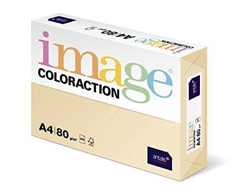 Coloraction 838A 080S 2 - Antalis Kopierpapier, DIN A4, 80 g/qm, Farbe:dune