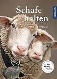 Schafe halten: artgerecht und natürlich