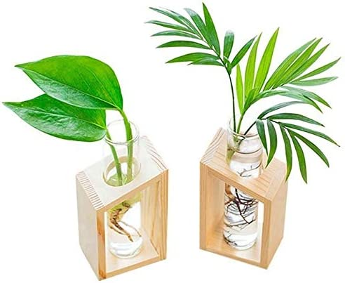 feiren Flower Potted Stands Crystal Discount is also underway Glass in Vase Direct stock discount Wood Tube Test