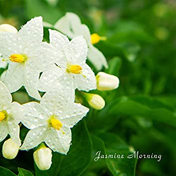 Jasmine Morning