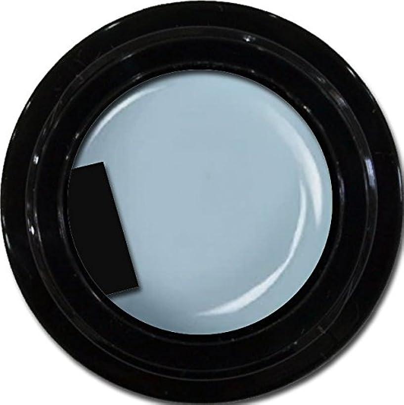 ビーチ類似性ウェイターカラージェル enchant color gel M705 SmokeBlue 3g/ マットカラージェル M705 スモークブルー 3グラム