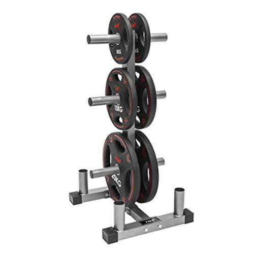 CHENSHJI Hantel-Rack Gewichtspeicher-Sport-Gewicht-Platten-Rack-Haus-Fitnessstudio für Heim-Fitnessstudio gut für Ihren persönlichen Fitnessstudio schwarz (Farbe : Silver, Size : 110x55x62cm)