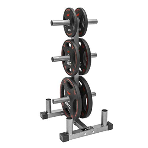 WanuigH Dumbbell Rack Dumbbell Rack Weight Storage Sports Weight Plate Rack Home Gym For Home Gym Well-matched For Your Personal Gym Black Tidy up Dumbbells (Color : Silver, Size : 110x55x62cm)