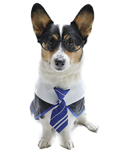 Impoosy Pet Halloween Dog Shirts Funny Cat Wizard Costume Cute Apparel Soft Clothes with Glasses (Small,Blue)
