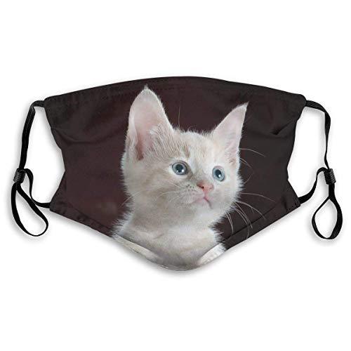 Niedliche Kitty Katze Haustier Hausmode Mundschutz Abdeckung Mit Filter Unisex Anti-Staub Waschbare und Wiederverwendbare Mundabdeckung Größe S.