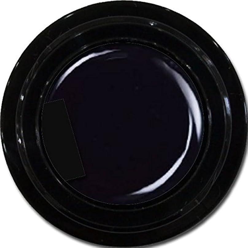アシュリータファーマン郊外有料カラージェル enchant color gel M901 Extreme Black 3g/マットカラージェル M901 エクストリームブラック 3グラム