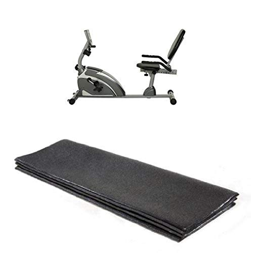 Exerpeutic 900XL Extended Capacity Recumbent Bike and Stamina Equipment Mat Bundle