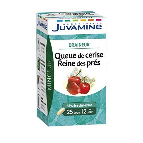 JUVAMINE - Phyto Gélules Reine Des Prés Queue De Cerise 50 Gélules