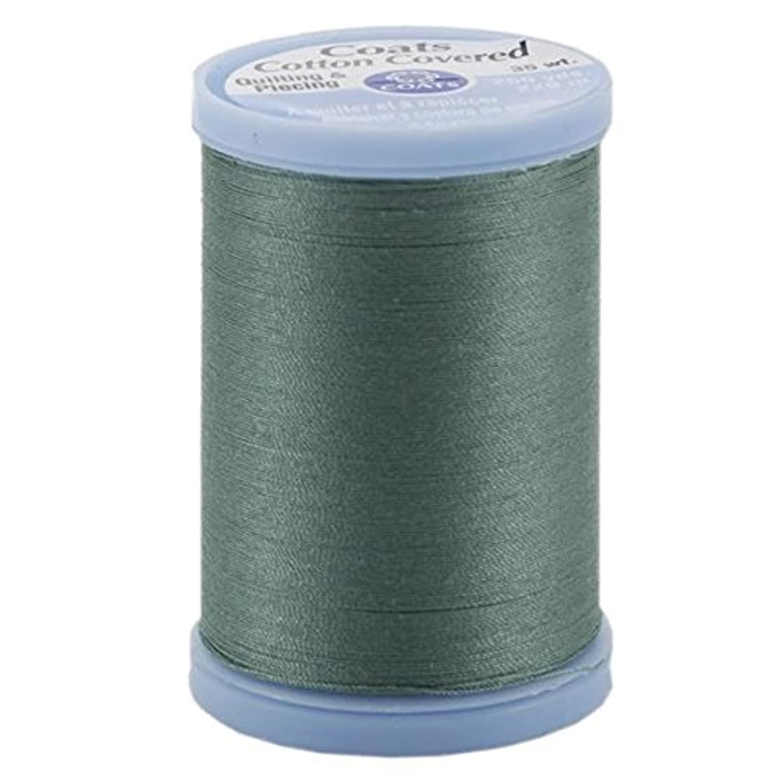 Coats: Thread & Zippers Cotton Covered Quilting and Piecing Thread, 250-Yard, Juniper