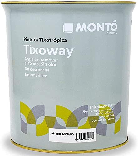 Pintura para Paredes con Humedad, Transpirable. Evita o Retrasa las Manchas, el Moho y el Salitre. Tixoway Antihumedad Acqua (Blanco 750ml)