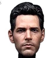 HiPlay 1/6 フィギュア ドール 用 ヘッド 頭 男性 ハンサム 硬骨漢 塗装済 TBLeague/JIAOUDOLLボデイに対応 HS020 (D)