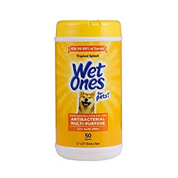 Wet Ones for Pets Multi-Purpose Dog Wipes with Aloe Vera   Dog Wipes for All Dogs in Tropical Splash Wipes for Paws & All Purpose   50 Ct Cannister Dog Wipes