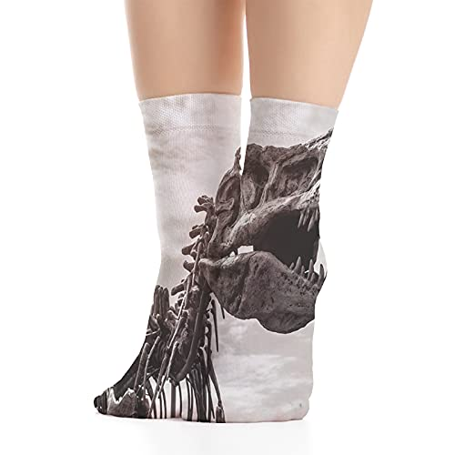 Men's and Women's Funny Casual Combed Cotton Socks,Tyrannosaurus Rex Remains Photo Tilt Shot with Dramatic Cloudy Sky
