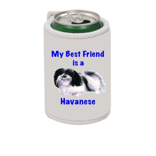 My Best Friend is Havanese