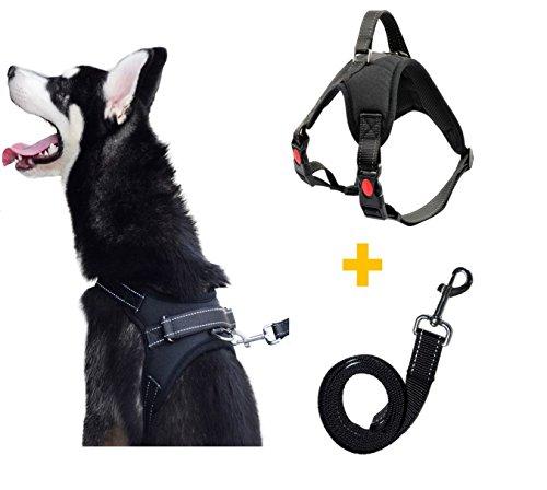 Hundegeschirr Heavy Duty Big Hunde Geschirr Verstellbar Pet Dog Vest Harness Welpengeschirr Weich Gepolstertes Mittlere Große Hund Brustgeschirr Weste für Training oder Walking (M, Black)