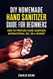 DIY Homemade Hand Sanitizer Guide for Beginners: How To Prepare Hand Sanitizer Antibacterial Gel On a Budget (English Edition)