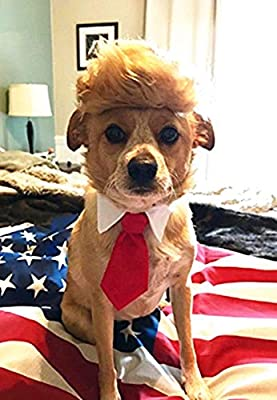 Trump Style Pet Costume Dog Wig, Donald Dog Clothes with Collar & Tie Head Wear Apparel Toy for Halloween, Christmas, Parties, Festivals