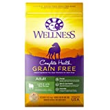 Wellness Complete Health Natural Grain Free Dry Dog Food, Lamb,...
