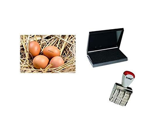 Egg Dater KIT - Includes 3mm Rubber Date Stamp and Ink pad containing Egg Safe Food Ink - Black
