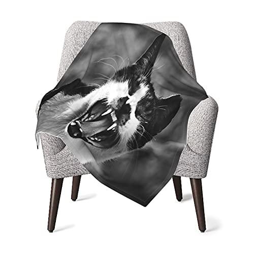 Olverz Manta de gato para bebé, cómoda manta de bebé de felpa gruesa, manta de bebé suave para cochecito de cuna recién nacidos