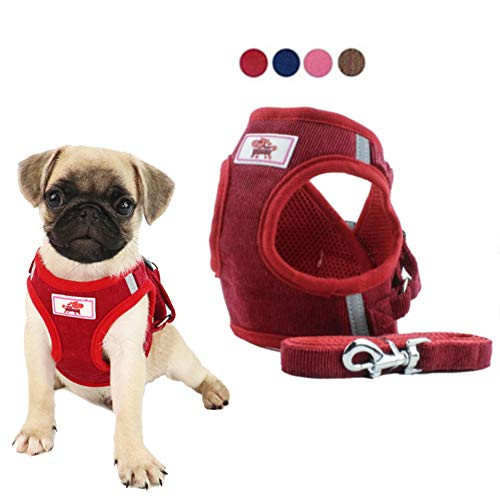 FEimaX Dog Harness and Leash Set for Walking, No Pull Adjustable Reflective Escape Proof Step-in Vest Harness for Small Dogs Cats Breathable Soft Mesh Puppy Kitten Corduroy Harnesses