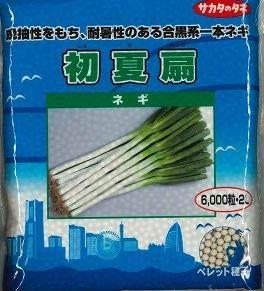 サカタのタネ 野菜の種 ネギ 初夏扇 ペレット種子(2L) 6000粒