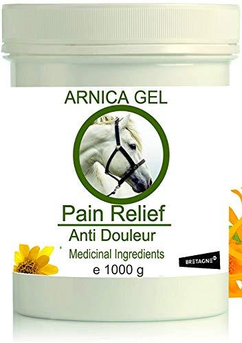 Arnika Gel 90% Arnika für Pferde – Schmerzstiller & Entzündungsblocker Arnika Gel 1000g l Gel für Muskeln, Sehnen und Gelenke