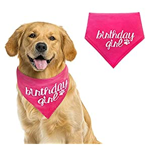 Dog Birthday Bandana Girl Medium to Large – Pink Pet Scarf- Birthday Bandana- Great for Special Occasion or Birthday Gift by Stella and Bear Co. (Medium to Large, Pink Girl)