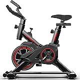 GWSPORT Bicicleta Indoor Space Freno Magnético, Transmisión por Correa Poli V De Caucho, Pantalla LCD, Resistencia Variable, Altura Ajustable, Indoor, Carga máxima 120 kg