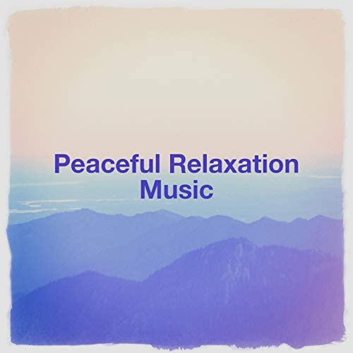 Musique de Relaxation, The Relaxation Providers, Relaxation Music With Nature Sounds
