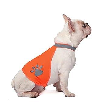 AYKRM Gilet de sécurité réfléchissant pour Chien – Gilet de Chasse imperméable Orange pour Une Meilleure visibilité de Jour (20, Orange)