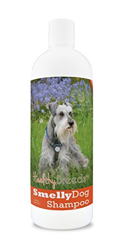 Healthy Breeds Smelly Dog Deodorizing Shampoo & Conditioner with Baking Soda for Miniature Schnauzer - Over 200 Breeds - 8 oz - Hypoallergenic for Sensitive Skin