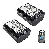 Amsahr B-NPFP50-2CT - Batería de Repuesto para cámara Digital y videocámara Sony NP-FP50, NPFP30, DCR 30 (Gris)