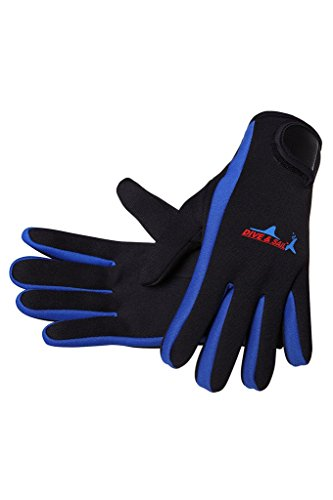 DIVE & SAIL Wetsuits 1.5 mm Premium Neoprene Gloves Scuba Diving Five Finger Glove, Blue, Medium
