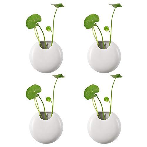 T4U 4 stück Keramik Wandvase, Rund Deko Wandbehäng Pflanzgefäße Blumentopf, Anbringung an Wand für Zimmerpflanzen, Sukkulenten, Luftpflanzen, Kakteen, Kunstpflanzen und Mehr(Weiß, 10cm)