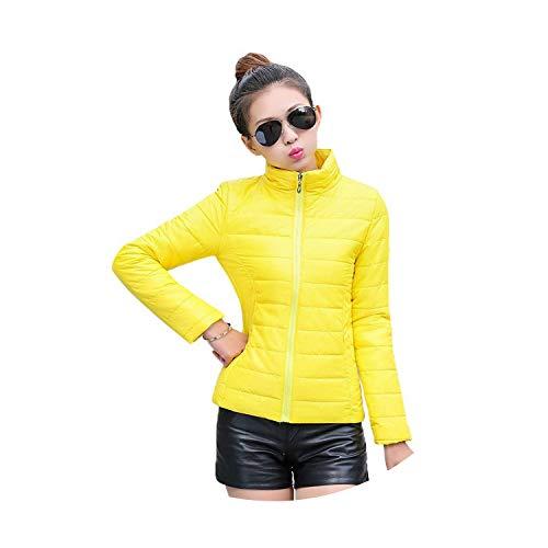 Damesjack om warm te houden in de winter gevoerde zijde, dames casual slank gewatteerde winterjas