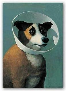 Dog Art Print Dog with Cone Michael Sowa - No Frame (11 X 17)