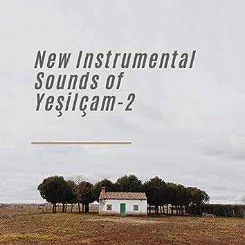New Instrumental Sounds of Yeşilçam - 2