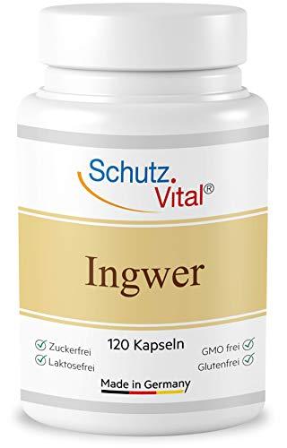 Ingwer Kapseln hochdosiert - 1000 mg Tagesdosis - 100% Ingwer gemahlen - Kein Ingwer Extrakt - 120 Kapseln - laborgeprüft und hergestellt in Deutschland