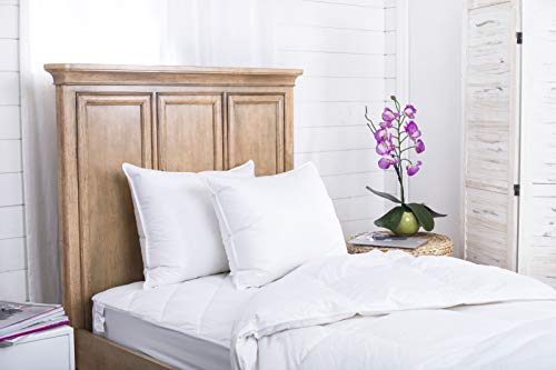 Continental Bedding 100% Goose Down Pillows - Set of 2 - Premium Luxury Sleeping, Egyptian Cotton Shell, Medium Firm for Side, Back, Stomach Sleepers, White, Queen Size - 20x30, Made in USA
