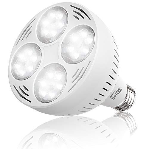 Bonbo LED Pool Light Bulb – White – 12V 50watt – 3800 lumens