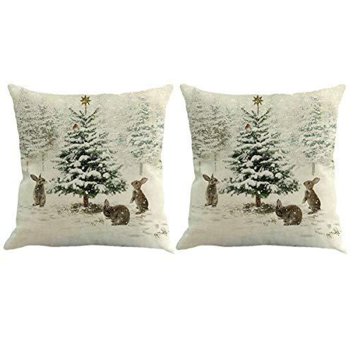 HEALLILY - Juego de 2 fundas de almohada decorativas de Navidad para sofá, cama, cama, coche