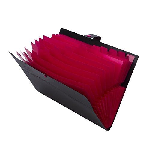 Kaka Mall Porta Documenti A4 Fisarmonica Contenere Almeno 400 Fogli Impermeabile Espandibile con 12 Tasche 2 Sacchetto di Biglietto da Visita Ufficio Scuola Viaggio Nero